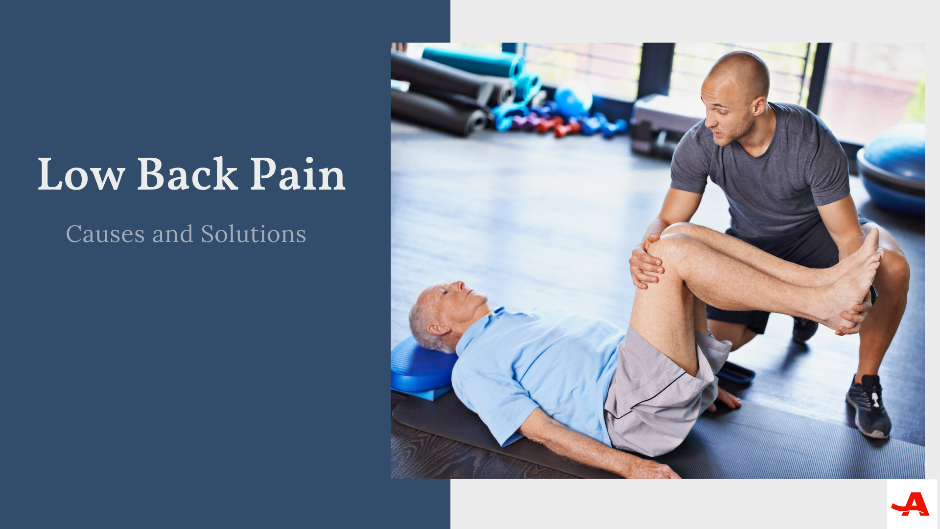 Low Back Pain - Promo Image.png