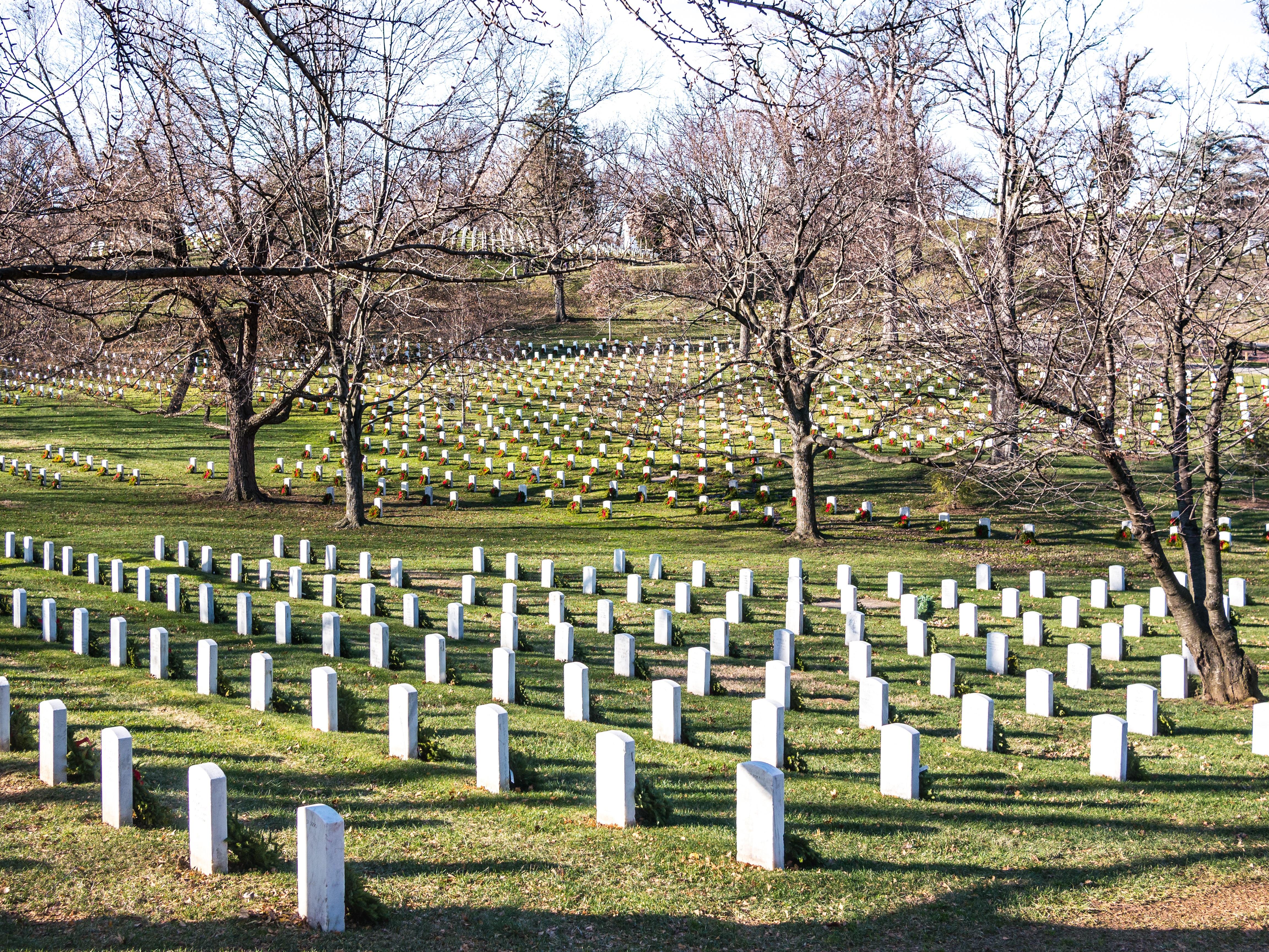 Gravestones of the Cemetery