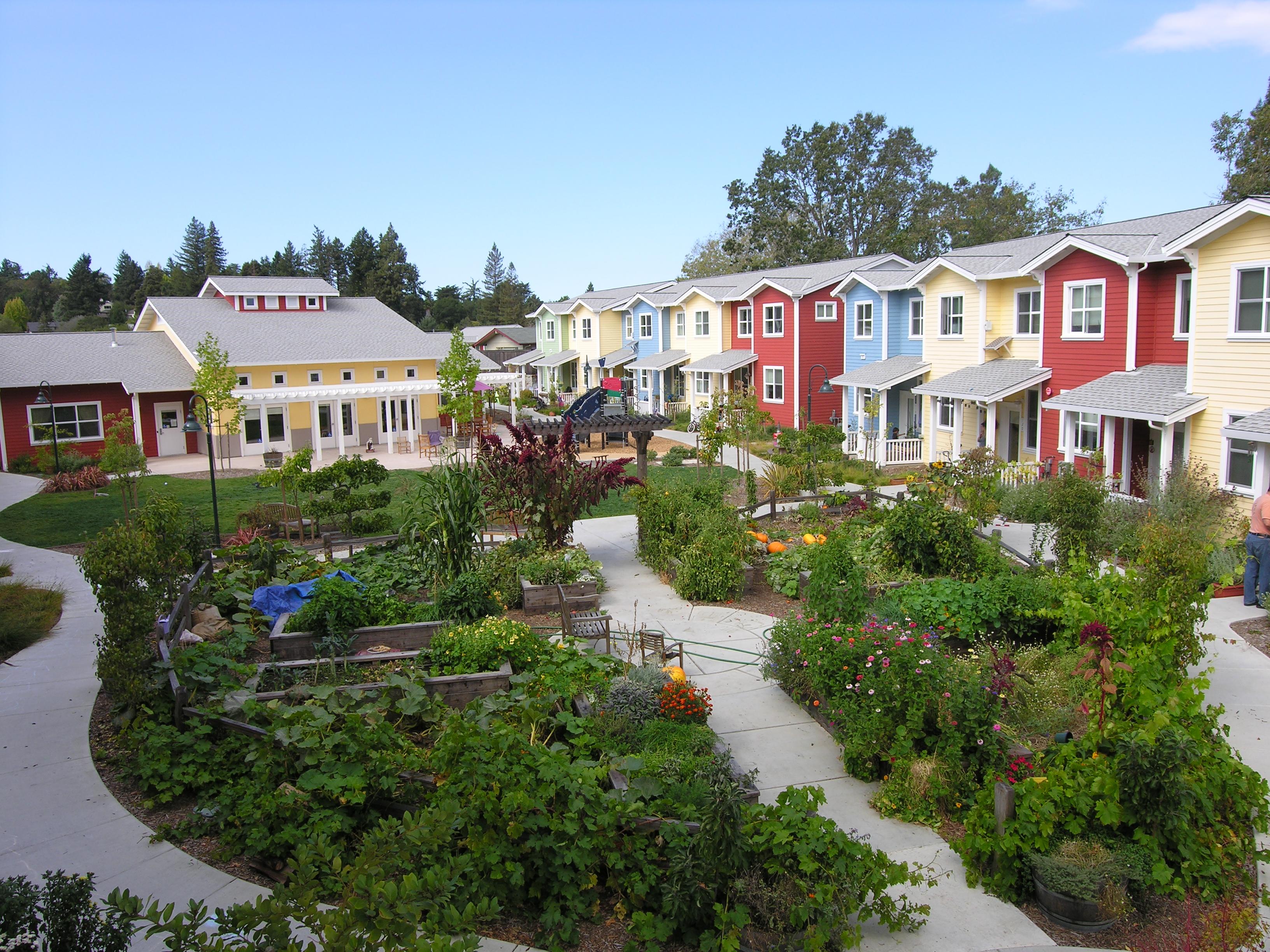 petaluma-ave-homes-cohousing.jpg