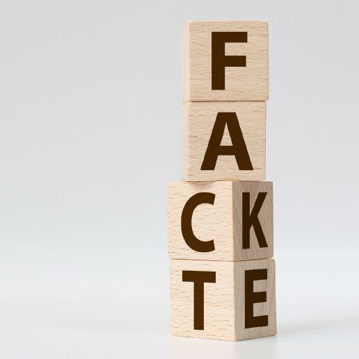 Fact Fake image.JPG