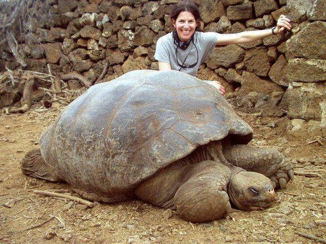 Galapagos: Where the wild things are