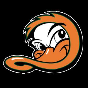 ducks logo2