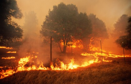 ASK AARP: The Burning Issue of Wildfire Preparation