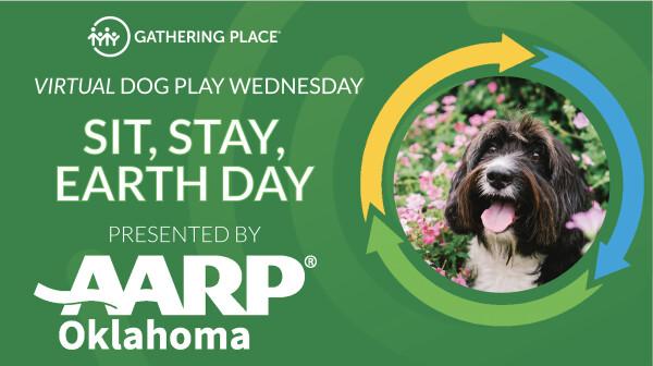 OK April Dog Play Wednesday