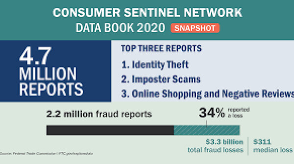 Consumer Sentinel 2020 Report.png
