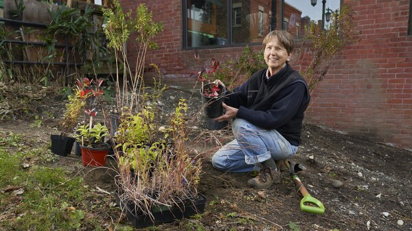A woman kneels in a garden, holding a potted plant that's ready to be put in the soil