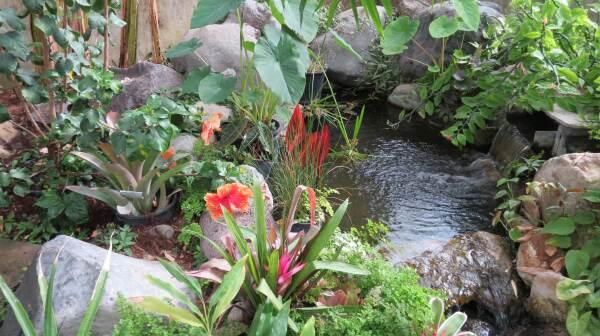 western CO  botanic gardens