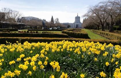 AARP Oregon Sets Legislative Agenda