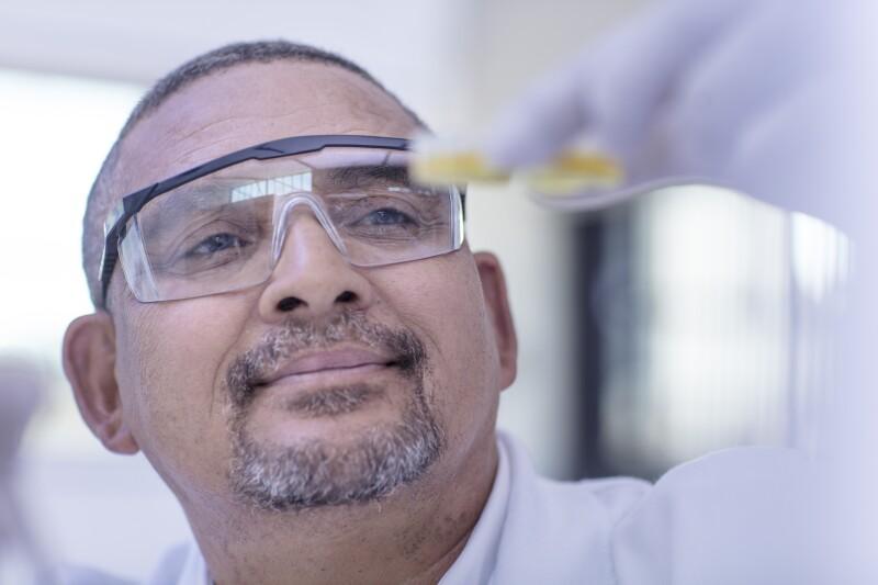 Laboratory worker examining contents of petri dish