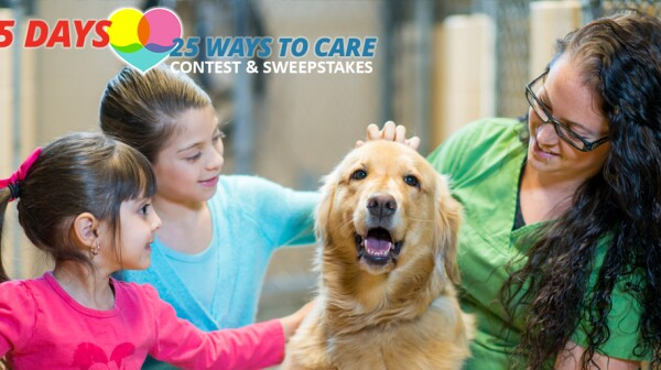 25 Days_25 Ways to Care Contest_Create the Good_vet-tech-children