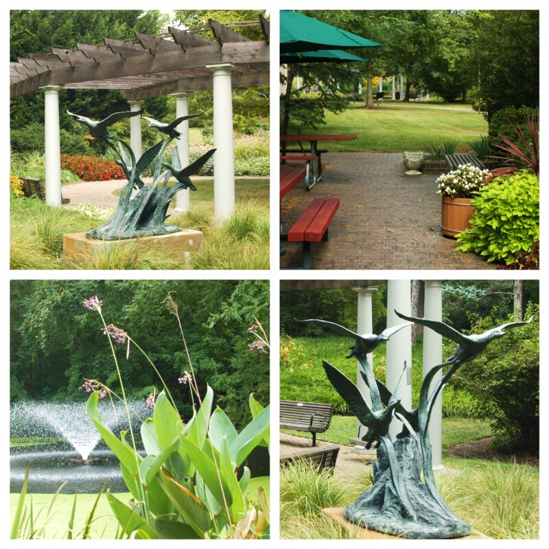 tawes-garden-collage