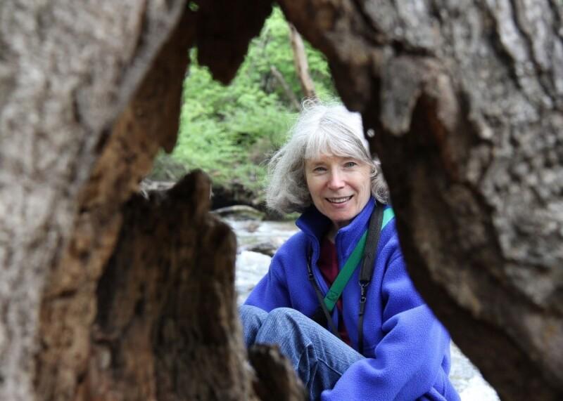 Carole Herman.jpg
