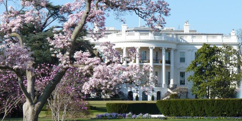 White House in Spring.jpg