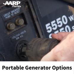 Portable Generator Options.png