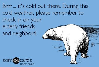 Polar bear_winter cold_012214_cmp