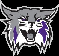 Weber State football logo