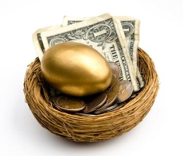 Nest Egg with money