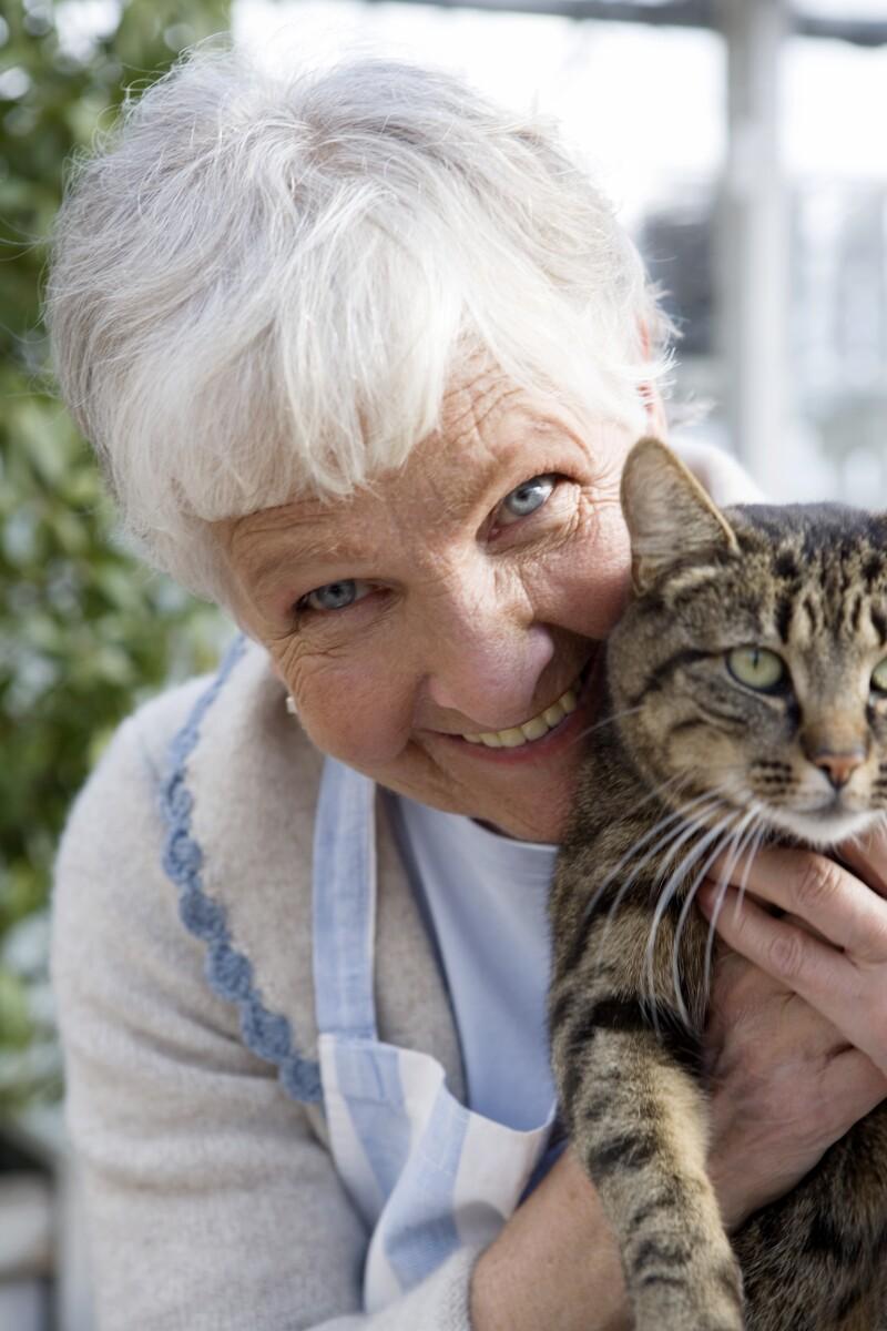 An elderly Scandinavian woman and a cat Sweden.