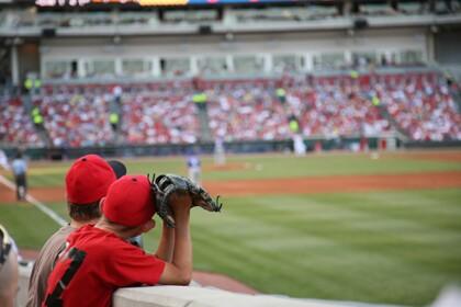 localaarp baseball