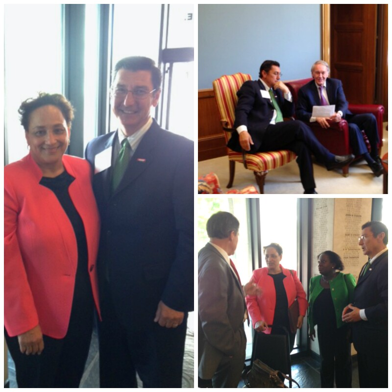Lobby Day 2015_PicMonkey Collage