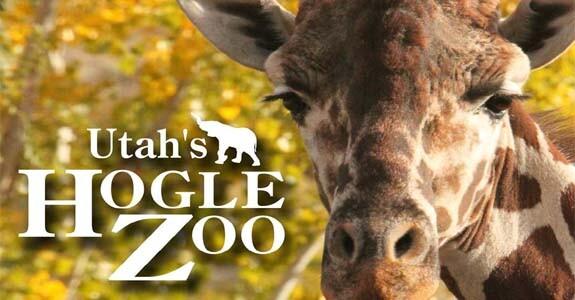 hogle-zoo1