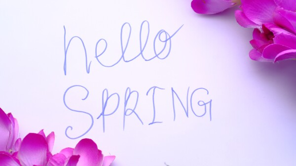 hello spring written on white paper with Spring flowers on a dark wooden background