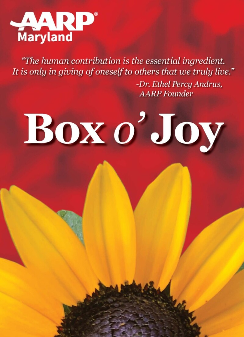 Boxes of Joy.jpg