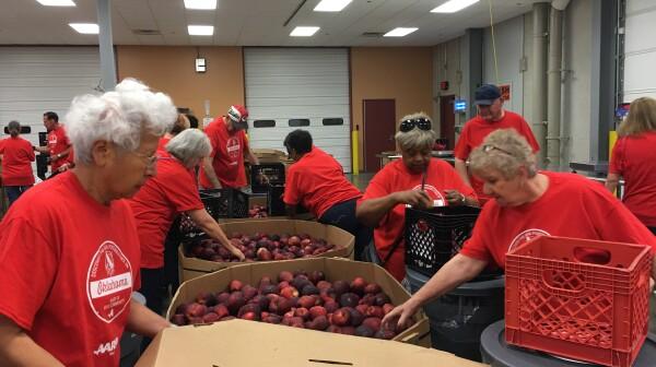 Tulsa Sorting Apples