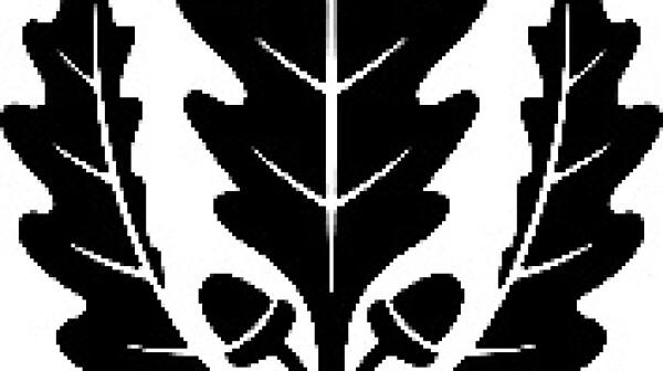 UConn symbol