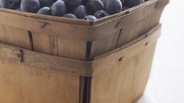 Fresh organic Maine blueberries