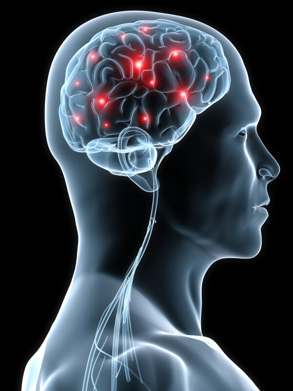Brain499999
