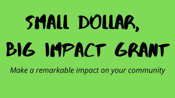 Small Dollar, Big Impact Grant: make a remarkable impact on your community