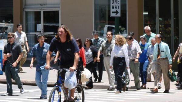 Honolulu Livable Communities Survey