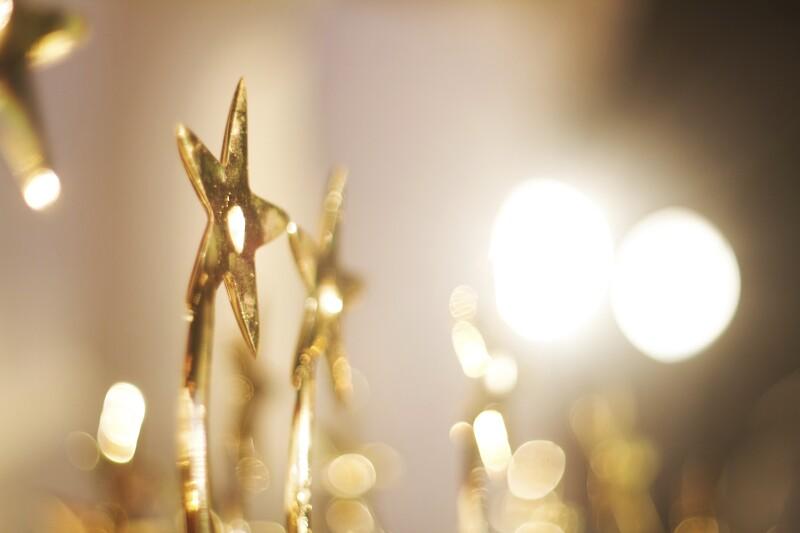 Award_AlinaRampersaud_499,999.