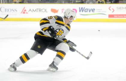 Catch the P-Bruins on January 24