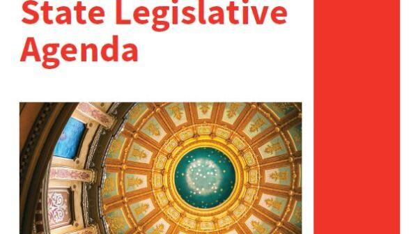 2021 AARP MI State Legislative Cover Thumbnail.JPG
