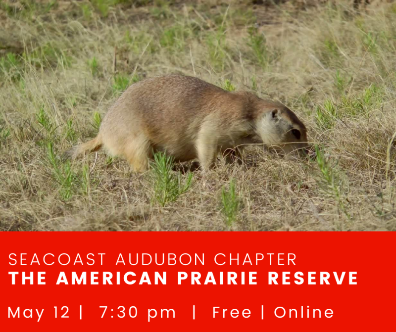 The American Prairie Reserve.png